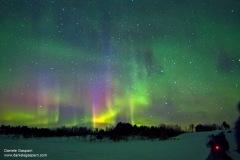 aurora_colori_web2_fb