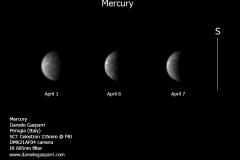 mercury_gasparri